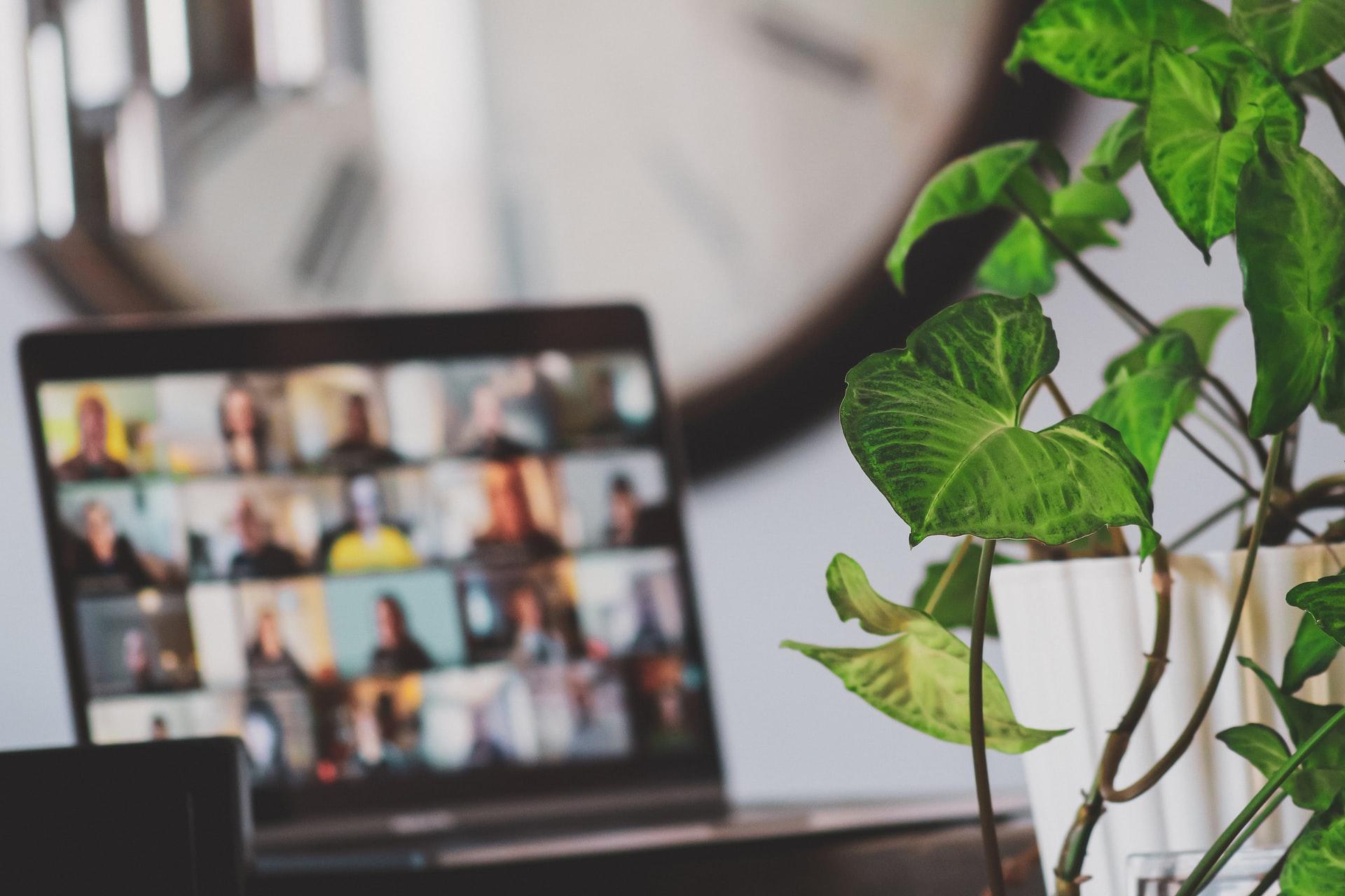 Bild på dator i rum med grön växt